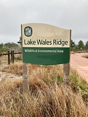 Lake Wales Ridge Wildlife & Environmental Area