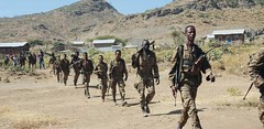 Post-T.P.L.F Tigray in the Aftermath of the Law-Enforcement Operation