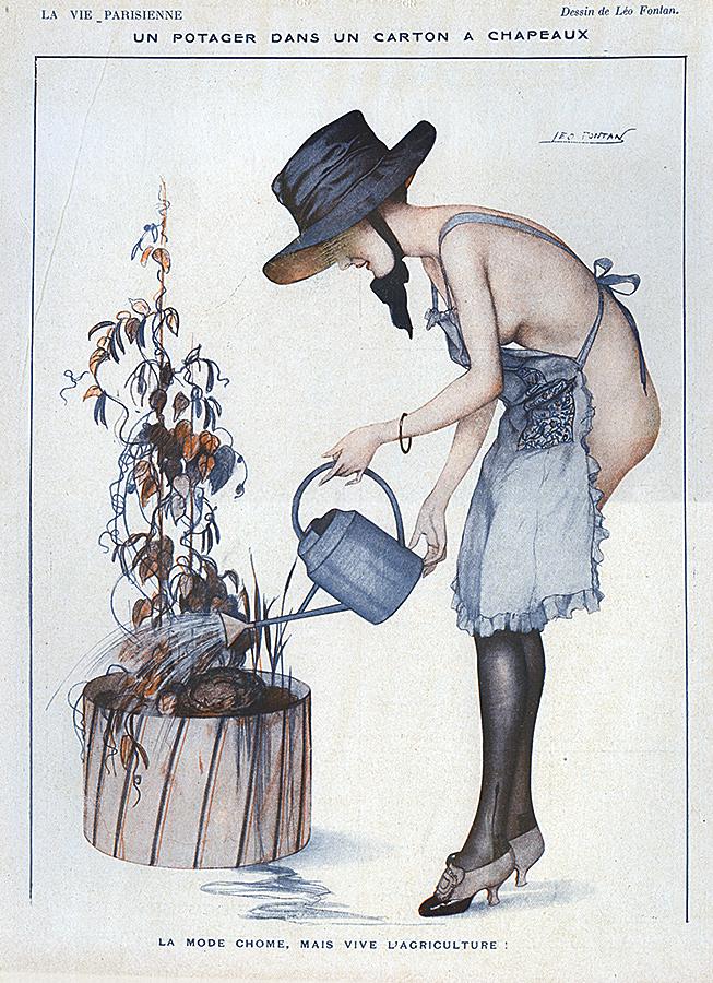 Un potager dans un carton à chapeaux