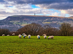 Walk to Summerseat_0041_2_3_easyHDR-default.jpg