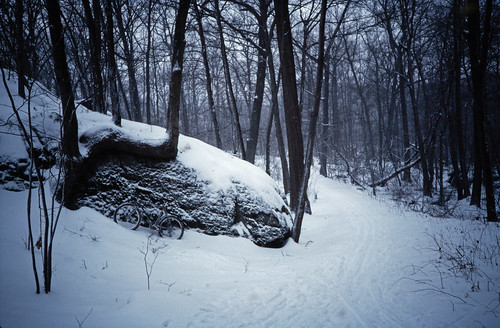 Hammond Pond Reservation in Snow (1)