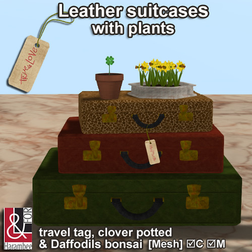 Leather suitcases with plants