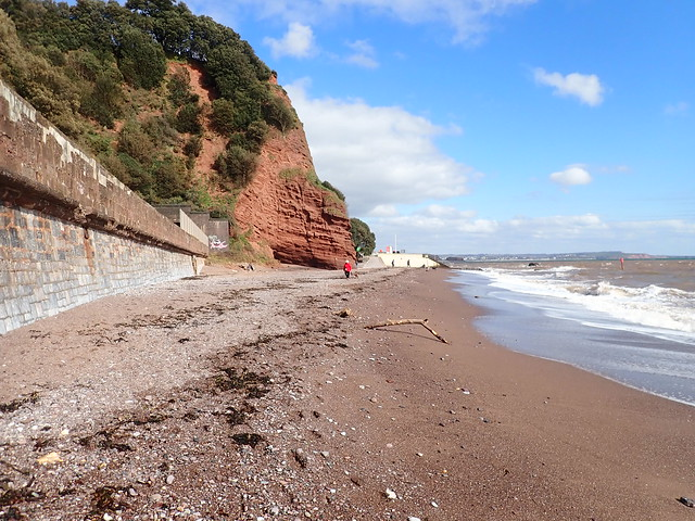 5 March 2021 Dawlish (10)