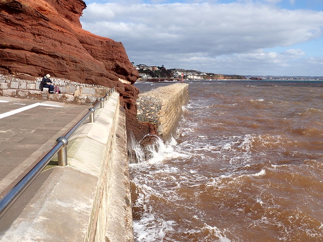 5 March 2021 Dawlish (8)