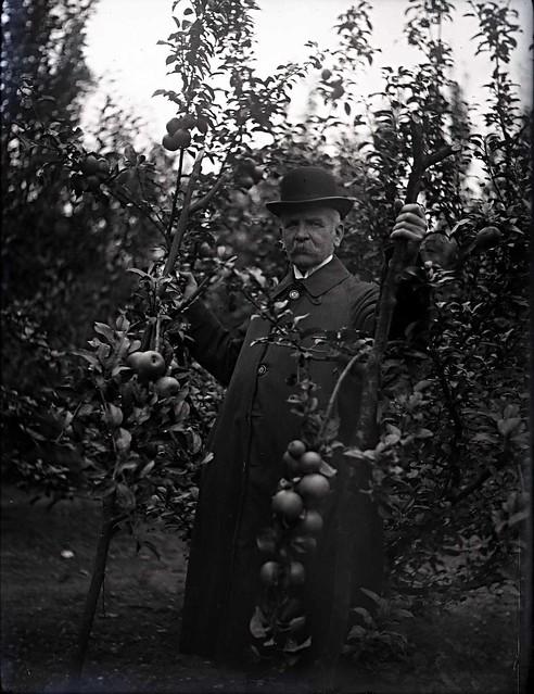 Jan de Goeijen in de kwekerij van Angerenstein