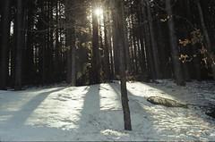 Ciao neve
