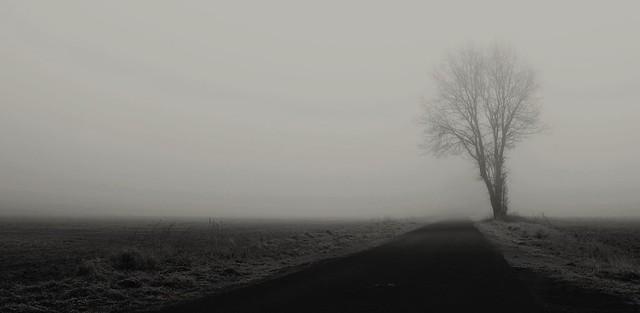The city behind the fog / Die Stadt hinter dem Nebel