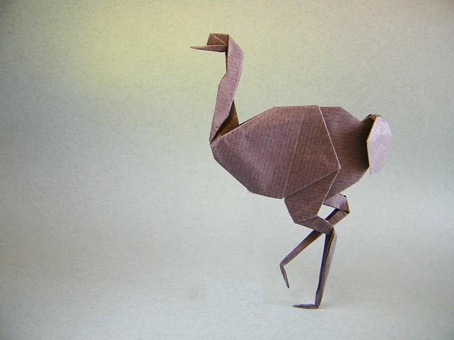 Avestruz - Juan Gimeno