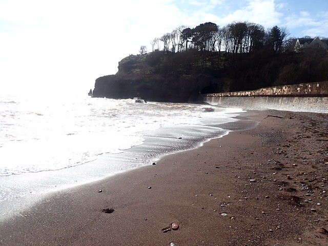 5 March 2021 Dawlish (9)