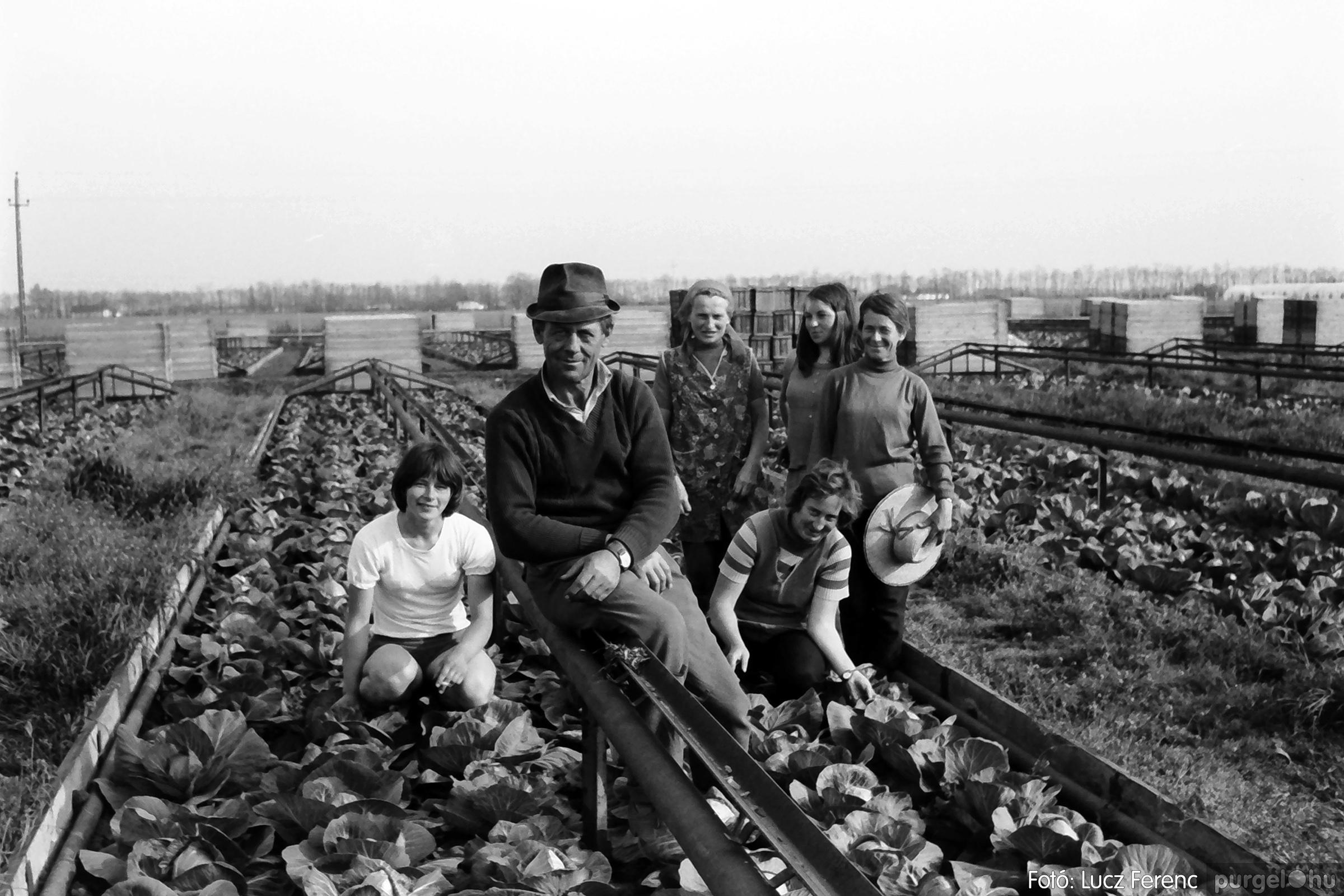044. 1976. Élet a kertészetben 009. - Fotó: Lucz Ferenc.jpg