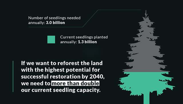 """A graphic stating """"Number of seedlings needed annually: 3.0 billion. Current seedlings planted annually: 1.3 billion. If we want to reforest the land with the highest potential for successful restoration by 2040, we need to more than double our current seedling capacity."""""""