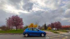 Gasteiz, 2021-03-05