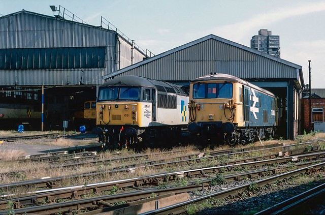 73 006 and 56 051 on shed at Stewarts Lane. 1993.