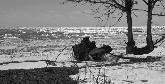 Lake Ontario Winter Shoreline at Point Traverse