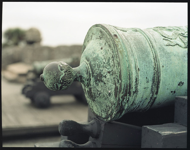 Beautiful Fort Cannons