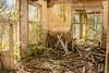 Abandoned (somewhere in Zeeland, NL)