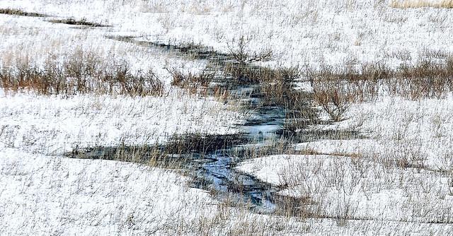 A Creek Runs Through It... ⭒ Explore ⭒ 6 (Earth Day)