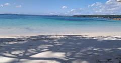 Little beach loveliness. #booderee2021