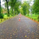 Tree line path at Moor Park, Preston