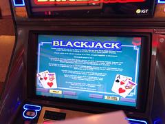 Video Blackjack - Casino Game