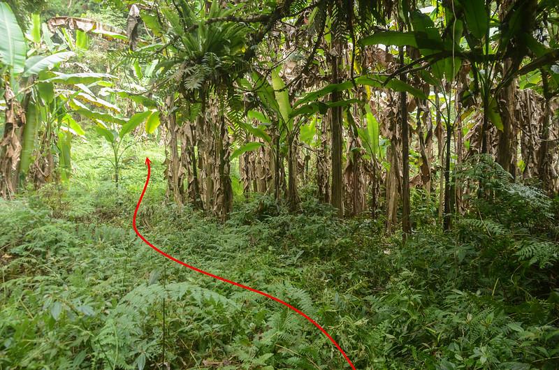 白石牙山土石產道終點香蕉園稜線上切點