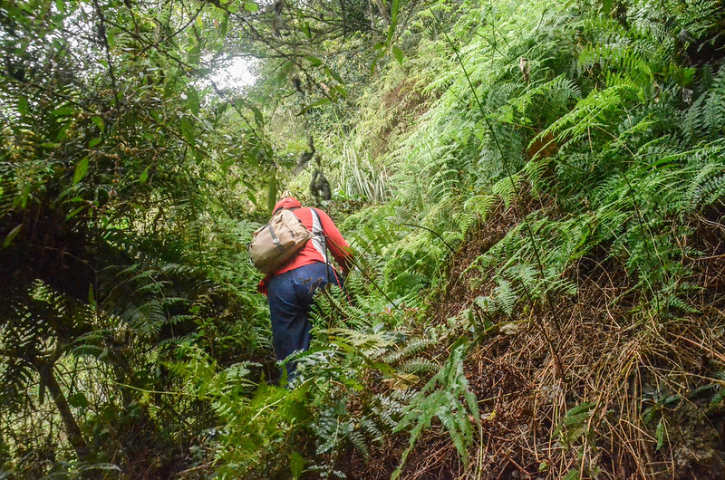 白石牙山上切稜線拉繩段 (1)