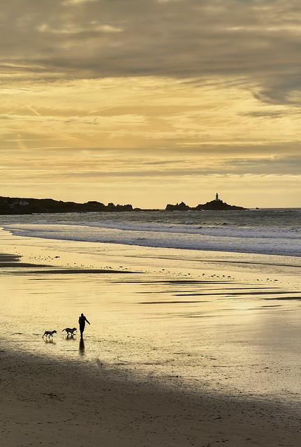 Dog walk  St Ouens Bay, Jersey CI.