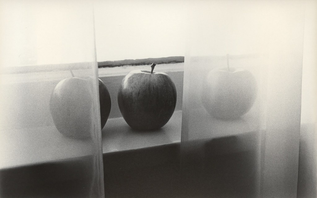 455 - Apples in the Parlor - Caffenol Print