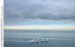 Ice-Capped Groyne Remnants