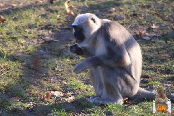 Besuch Zoo Berlin 21.02.21028