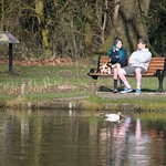 Candid couple reflections on a bench in the park