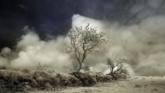 Tempestuous skies