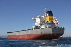 Ship. Ilia 9577460
