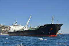 Ship. Alpine Meadow 9478688