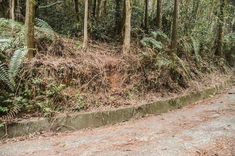 線浸山停車處登山口