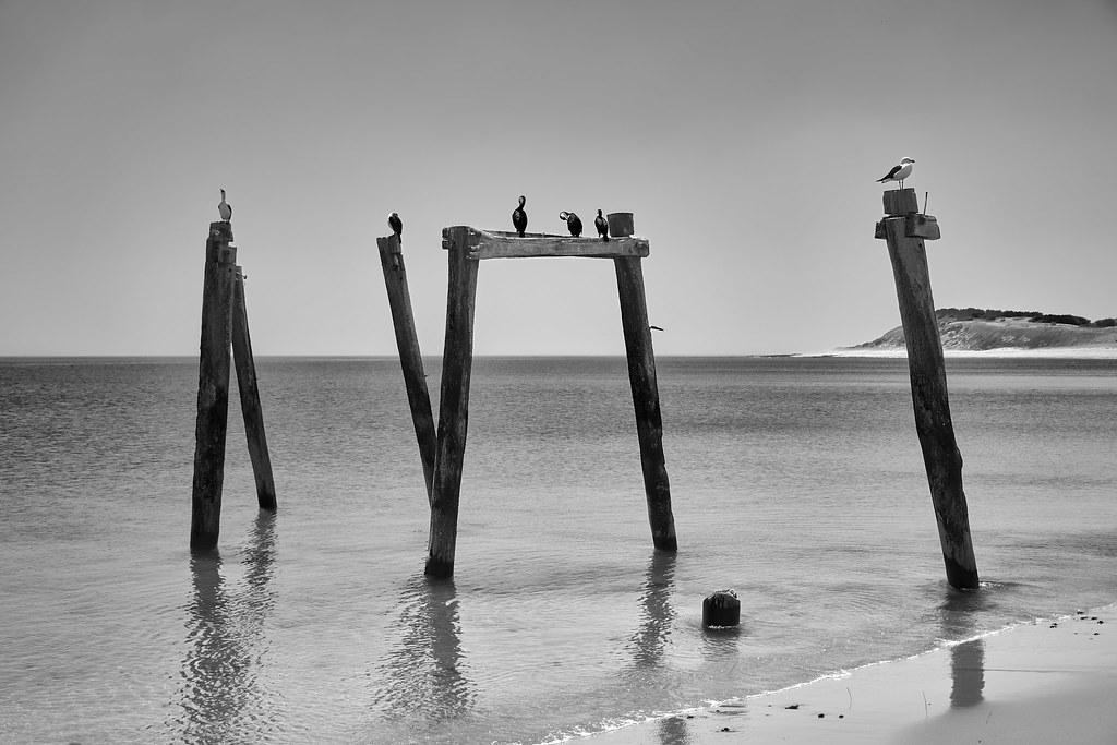 Cat Bay, Phillip Island