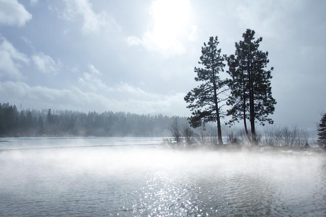 Trees and fog around mountain lake, Oregon