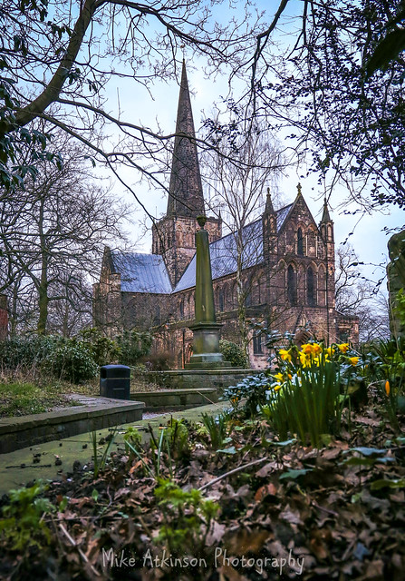 St. Cuthbert's & The Daffodils