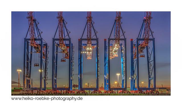 five cranes!