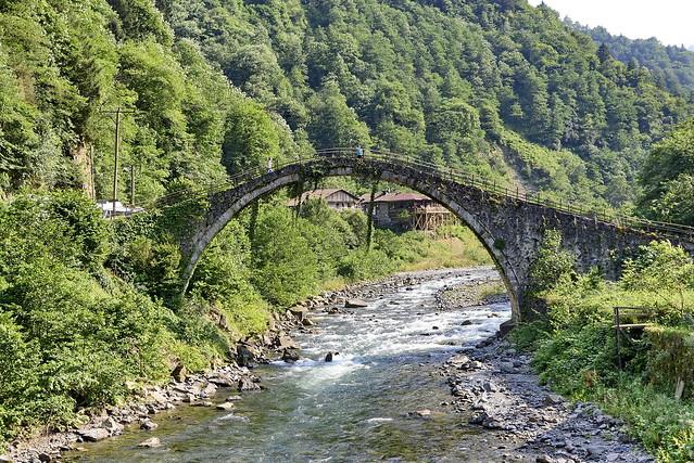 Bridge in green walley