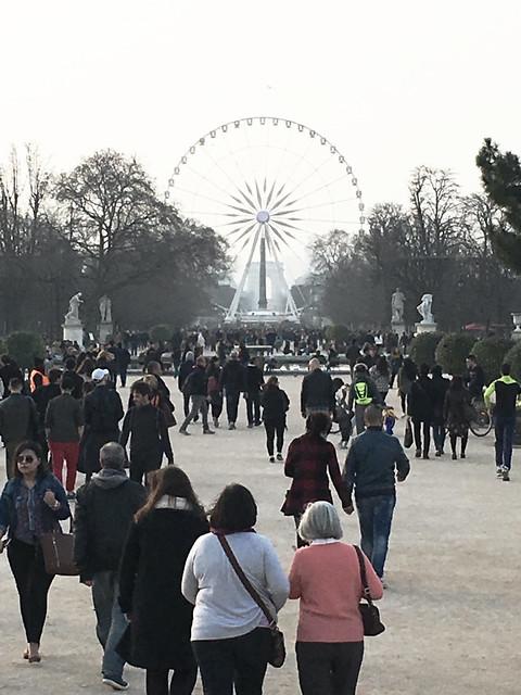 Paris France  ~   Roue de Paris  ~ Ferris Wheel