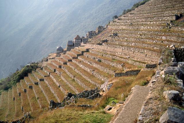 Terraces for planting - Machu Picchu, Peru