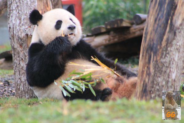 Besuch Zoo Berlin 27.03.21004