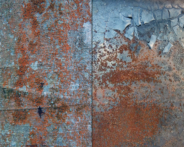 Abstract combo collage of tree bark with orange lichen combined with a rusty dumpster with cracked blue paint