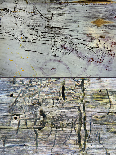 Abstract combo of tree bark with worm tunnels and dumpster with graffiti