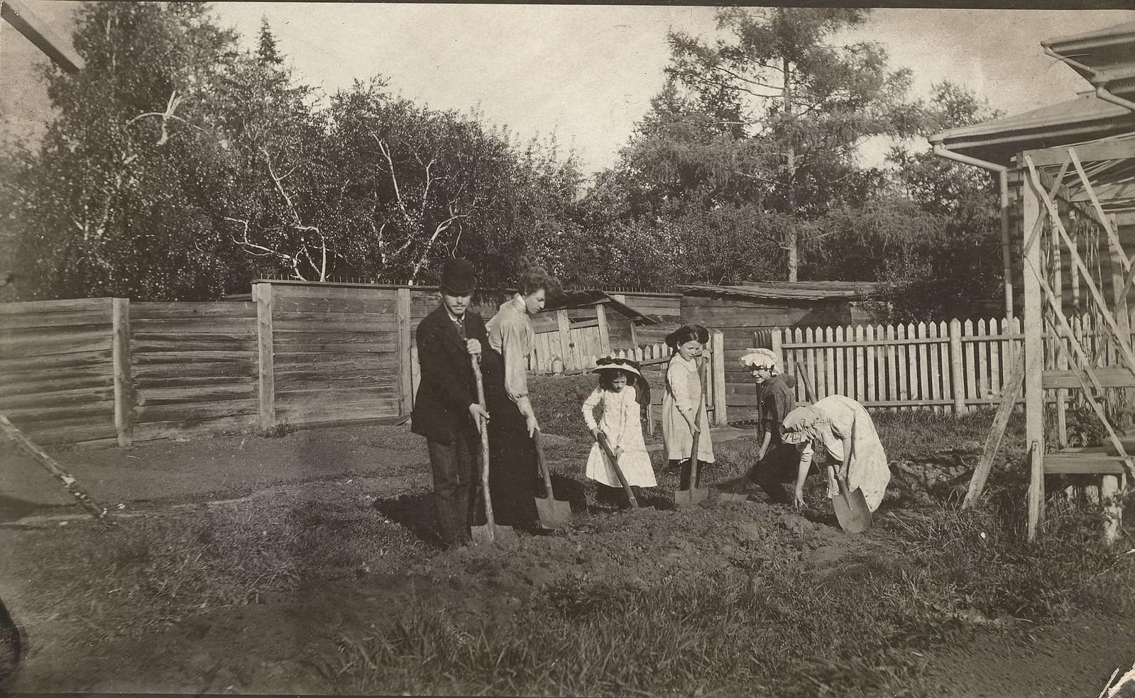 1910. Работа на домашнем огороде