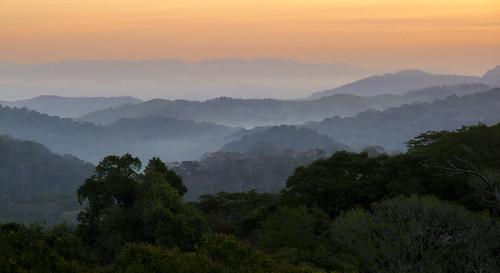 soberanianationalpark canopytower canalzone panama