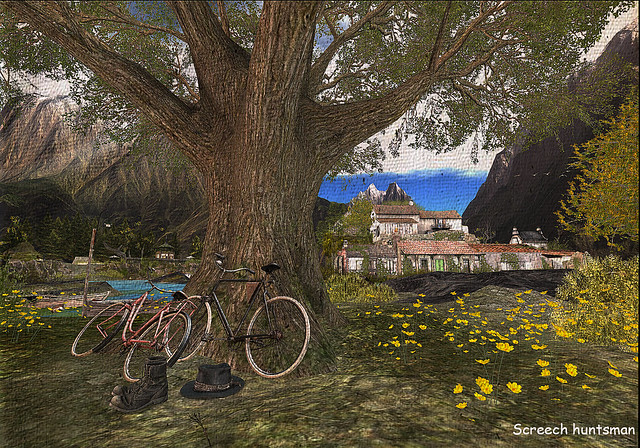 bicycles in the tree