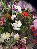 Garden Clubs Posies for Sale