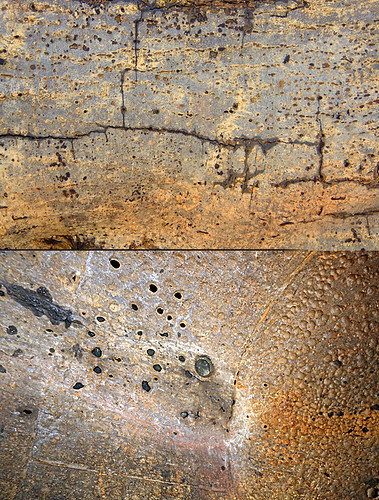 Abstract combo collage of the bark on a fallen tree bark combined with a rusty cement mixer